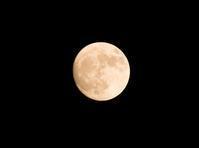 天秤座で満月 - プランテプラネットのブログ。ここからもうちょっと