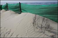 砂防網 - 薫の時の記憶
