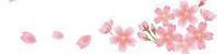 今日は呼吸器内科の診察日・暖かい花見日和散り始めた桜  パチリ。 - 気まぐれ日記◎山の辺の地蔵☆
