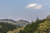 釜戸山を越えて花桃の咲き乱れる白子へ - デジカメ写真集