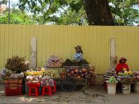 【カンボジア2020_4】Kampong Thomにて、世界遺産「Sambor Prei Kuk」 - 海外旅行はきらいでした