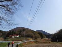 4月3日の大江高山①*イカリソウとスミレ* - 清治の花便り