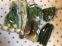 新鮮野菜を仕込む - おしゃれを巡る冒険
