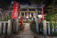 水火天満宮の夜桜を - はんなり京都暮らし