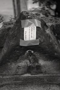 西宮散歩 - Life with Leica