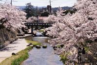 玉湯川(玉造温泉) - じじ & ばば の Photo blog