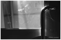 ガラスの汚れ - BobのCamera