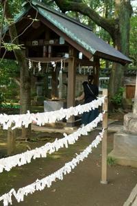 赤坂氷川神社 - 僕の足跡