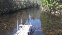小西養鯉場&小西米プロジェクトTheOdyssey2020-31鯉の里は米の郷 - 鯉の里は、米の郷