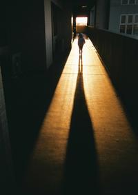影 / 写ルンです - minamiazabu de 散歩