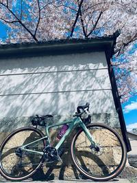 4/10(金)RideSolo グラベルロード! - きりのロードバイク日記