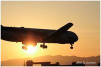 大阪伊丹空港の夕暮れ。 - 今日のいちまい
