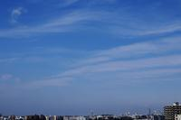 毛状雲(巻雲) - 日々の風景