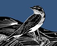 スカイ島の渡り鳥、ウィーテアーを祝して - ブルーベルの森-ブログ-英国のハンドメイド陶器と雑貨の通販