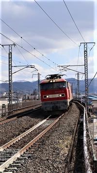 藤田八束の貨物列車写真@赤いボディーが素敵な貨物列車「レッドサンダー」、「金太郎」が東北本線を走る、そして可愛い貨物列車「桃太郎」は花吹雪の中 - 藤田八束の日記