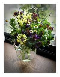 花摘みとトマトカルテット - あおいそら