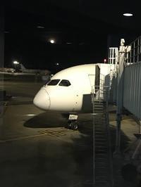 2020年2月 ホーチミン旅行 往路JL079便 - Sweet Life
