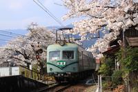 駿河徳山駅の桜♪ - happy-cafe*vol.2