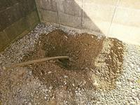 家の裏を掘る - NATURALLY