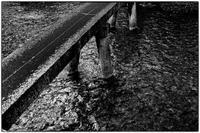 白川一本橋 - Hare's Photolog