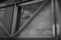 ガラス窓の中の景色 - フォトな日々