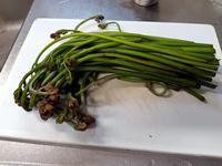 旬の味その2蕨と筍 - M's Factory