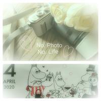 My   photo ・My  style - LAGOMな……PHOTO   LIFE !