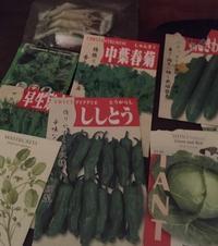 野菜を種から育てる - アバウトな情報科学博士のアメリカ