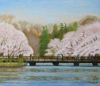 油彩「井の頭公園春2020」F102020年4月 - 中島たかじ 絵の世界2