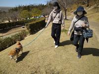 私は犬になりたい4 - カメラノチカラ