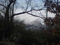 雨に山の雪を融かす力がありません(No.193) - 薪窯冬青 犬と山暮らし