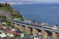 石橋ワム - みちざねの鉄ログ