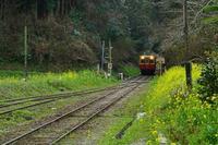 春のローカル鉄道2020-04-26更新 - 夕陽に魅せられて・・・