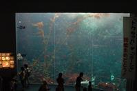 2007年9月 - 動物園へ行こう