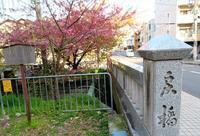 母と京都旅・晴明神社 - 月の旅人~美月ココの徒然日記~