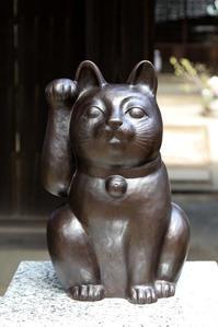 猫の尻尾 - memory