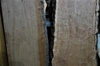 台湾樟(タイワンクス)一枚板杢 - SOLiD「無垢材セレクトカタログ」/ 材木店・製材所 新発田屋(シバタヤ)