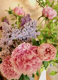 近くの藤が咲いていた✨ - Bouquets_ryoko