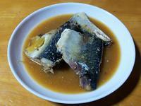 サバの味噌煮 - 「 ボ ♪ ボ ♪ 僕らは釣れない中年団 ♪ 」Ver.1