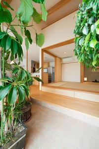 部屋の中で緑を楽しむ - K+Y アトリエ一級建築士事務Blog
