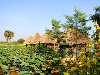 【カンボジア2020_8】トンレサップ湖ディナークルーズ - 海外旅行はきらいでした