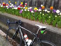 2020年4月のジテ活(後編) - 服部産業株式会社サイクリング部(3冊目)