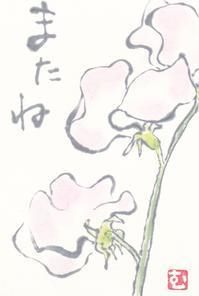 スイートピー「またね」 - ムッチャンの絵手紙日記