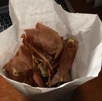 草木染の忘備録ーシルクに玉ねぎ - アバウトな情報科学博士のアメリカ