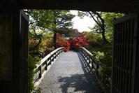 京都の想い出 - バリ島大好き