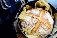 artisan bread and tiny pool* - Avenue No.8 Vol.2