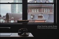 stay home save lives - すずちゃんのカメラ!かめら!camera!