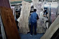 あなたにとってのキャラクターのある一枚板 - SOLiD「無垢材セレクトカタログ」/ 材木店・製材所 新発田屋(シバタヤ)
