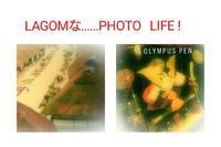 Boys'     Festival ❗ - LAGOMな……PHOTO   LIFE !