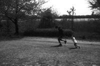 公園の利用は普段より少し多め? - Yoshi-A の写真の楽しみ